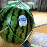 それでも私は西瓜を丸ごと買いました